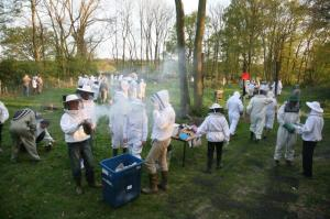 Training meeting at Henfold apiary