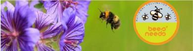 Bees Needs Banner